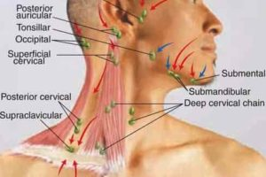 ear infection facial numbness