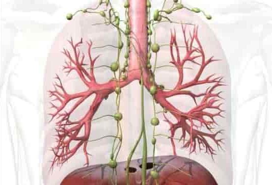 How Treat Swollen Lymph Nodes Naturally