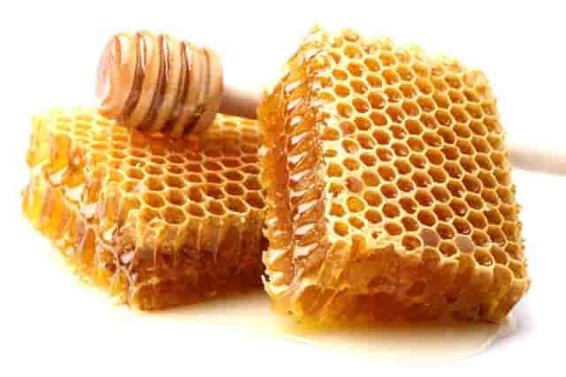 Honey for bed bug bite scars